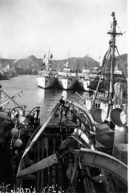 Crowded St. John`s Harbour